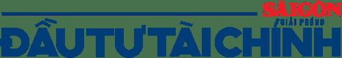 logo sgdt